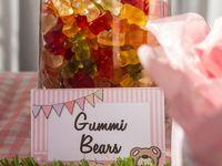 Teddy Bear Picnic 2nd Birthday