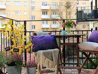 House - Patio/Yard/Garden