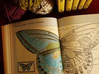 Antique and modern books about the many techniques of Needlework.