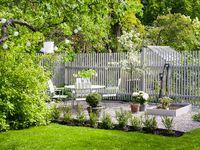 Häckar, staket och plank