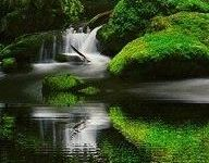 Breath taking nature