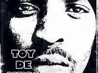 You bring me joy by Toy De Muso