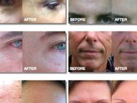 Nerium, contact me for more info