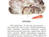 Невероятных изображений на доске «Животные»: 25 в 2019 г ...