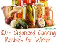 All kinds of canning recipes, canning tips, etc.