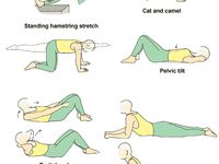 23 best lower back pain exercises and stretches pictures