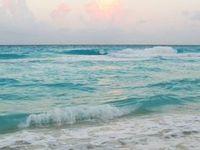 Ocean  Board
