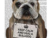 Keep calm & hug a Bulldog