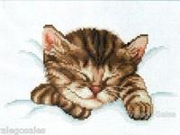 Cat Cross stitch & other cross stitch