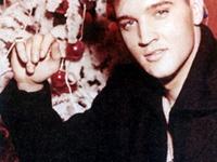 Elvis~