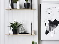 Modern Houseplants Inspiration / Upgrade your home with modern design. Transform your living room or home office with modern houseplants.