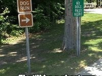 Witty and Creative Signs / Signs that make you :)