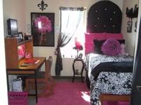 Zebras christmas lights in bedroom and pink zebra bedrooms