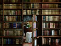 Libraries/Book Nooks