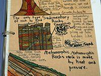 7th grade science ideas