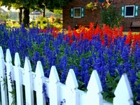 Picket fence decor