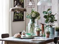 BOTANICAL ♣♣♣ FLORA home & garden / decoration / BOTANICAL FLORA home & garden / decoration