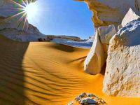 shine desert