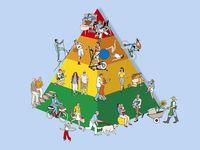 30 kinder in bewegungideen  turnen mit kindern kinder