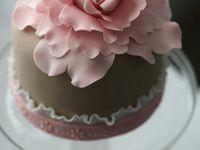 CAKERY : Mini Cakes