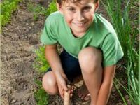 KIDS // Gardening Activities / This board includes ideas and activities for Gardening with Kids. Whether you're an expert gardener or just starting out, this board will help you!
