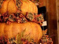 ♥ Pumpkin  ♥