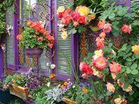 Outdoor Deco and Garden