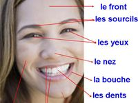 Learning French