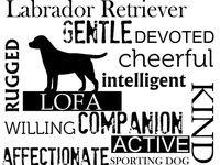 Everything Labradors