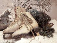 Winter ❅