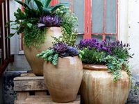 Fresh ideas for 'potting up' your 'thrillers', 'fillers' and 'spillers'!