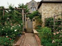 home.garden