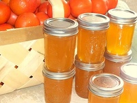 Canning & Preserving, dairying, spirits, & brewing