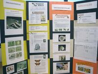 tri fold display board on pinterest creative posters poster boards