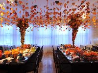 A variety of wedding, shower, and party ideas in orange, tangerine, coral, apricot, terracotta, and peach shades, tints, and color palettes. #peach #orange #apricot #wedding #weddings #showers #parties