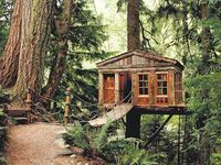 Doesn't everyone love tree houses?