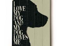 Dog Rescue Fundraising Ideas