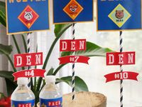 Ideas for Cub Scouts
