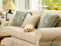 Homes inspired by L.L.Bean and Maine L.L.Bean Home and Backyard  Board