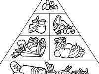 Pyramida stravovania