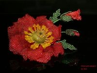 B-did Flowers