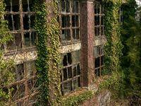 Abandoned,  Forgotten & Returned to Nature