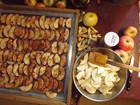 DryItOut - Dehydrating Foods