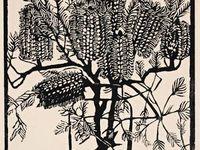 Prints / Lino cuts, etchings, woodblock, woodcut