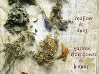 Herbs and Natural Medicine