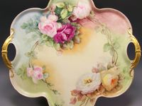 DISHES BY HAVILAND...