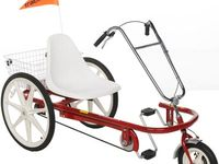10 Best Trike Adult Special Needs Adaptable Images On