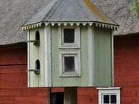 9 best ideas about dove cotes on pinterest bird houses for Dove bird house plans
