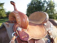 Horse Tack & Barn Ideas