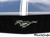 Mustang Specific Pins